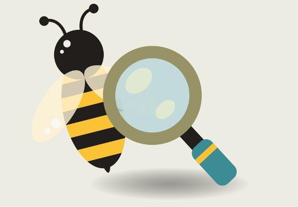 Déclaration des ruchers
